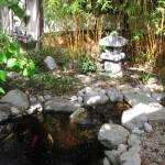 Koi pond at pure life wellness