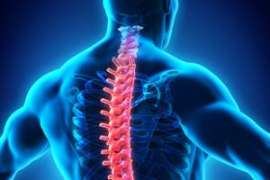 spine xray blue
